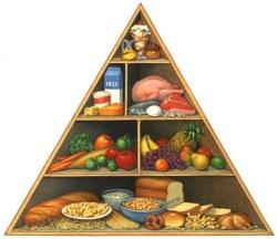 food-pyramid1-1